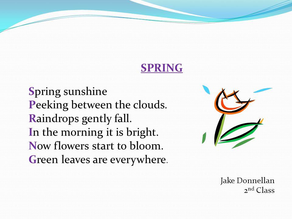 SPRING Spring sunshine Peeking between the clouds.