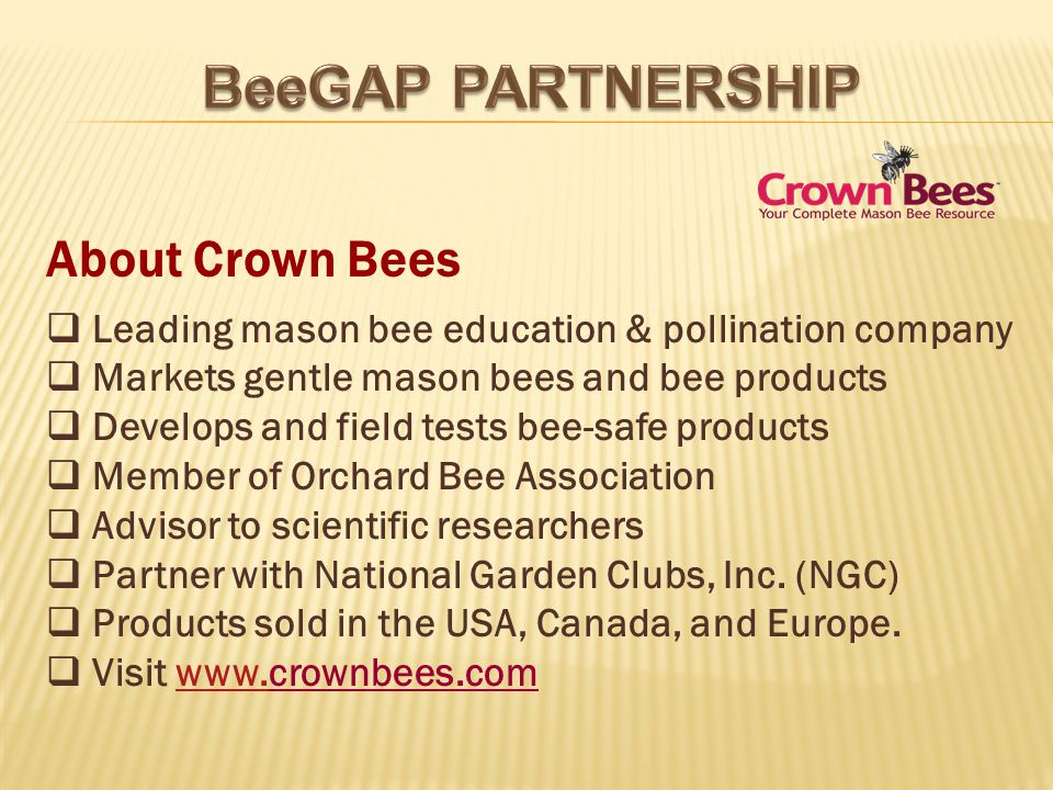 About Crown Bees Leading mason bee education & pollination company Markets gentle mason bees and bee products Develops and field tests bee-safe products Member of Orchard Bee Association Advisor to scientific researchers Partner with National Garden Clubs, Inc.
