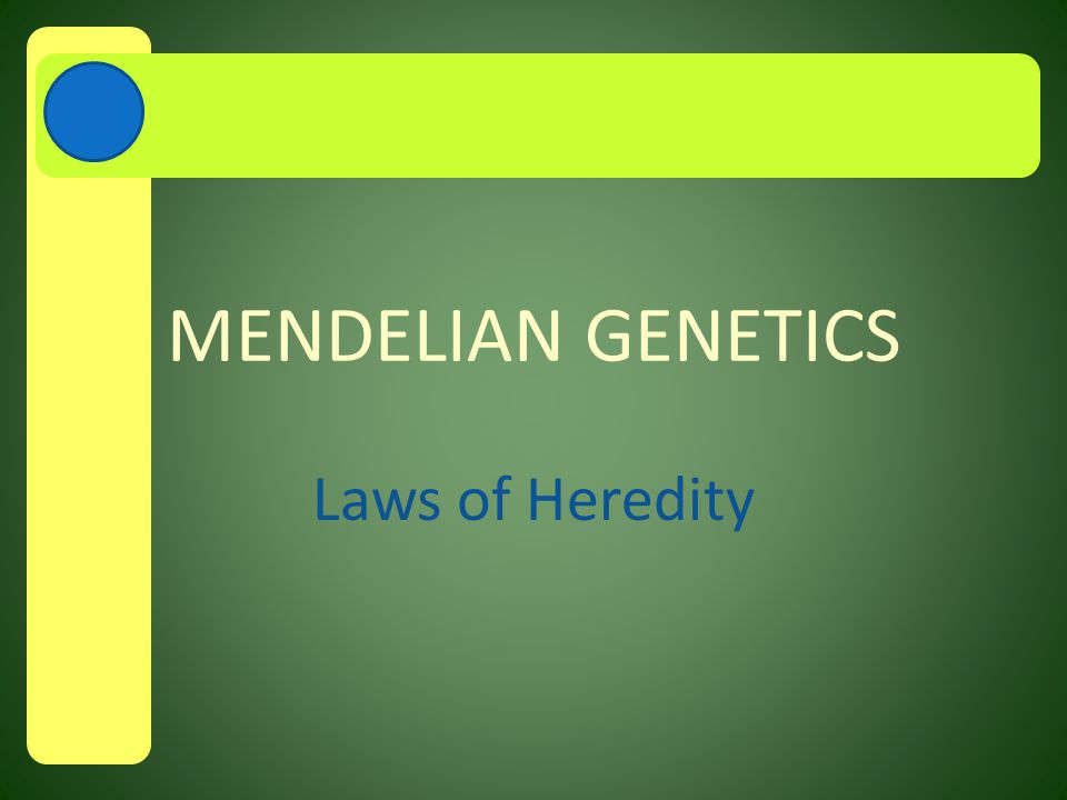 A.Origins of Genetics Passing characteristics from parent to offspring is called heredity Accurate study of heredity began with Austrian monk Gregor Mendel at his monastery gardens