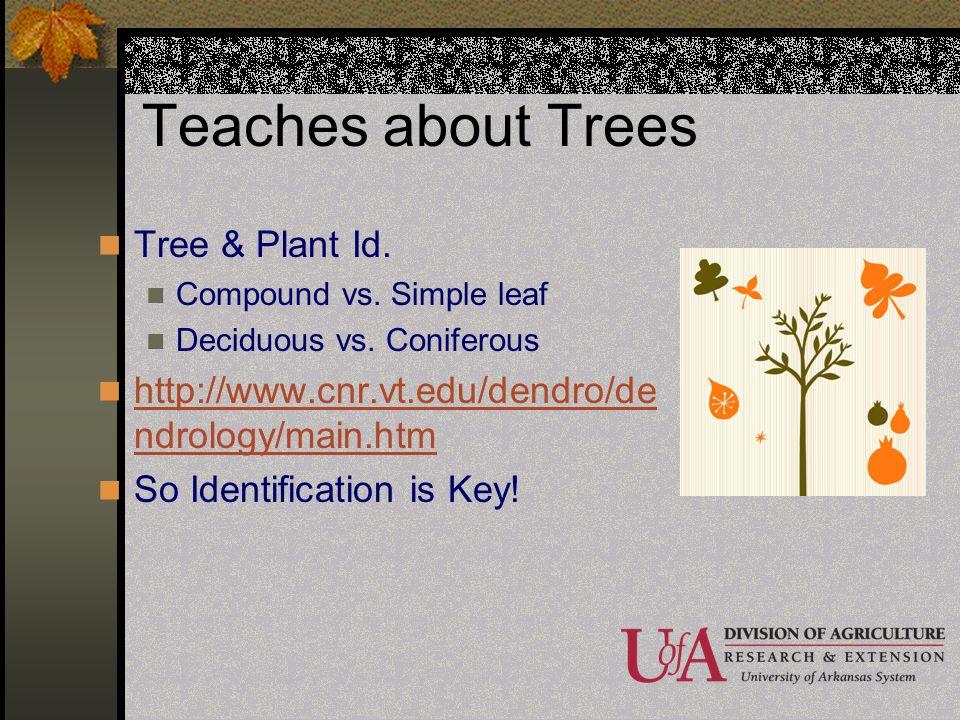 Teaches about Trees Tree & Plant Id. Compound vs. Simple leaf Deciduous vs. Coniferous http://www.cnr.vt.edu/dendro/de ndrology/main.htm http://www.cn