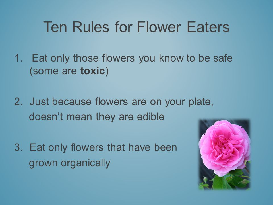 Ten Rules for Flower Eaters 1. Eat only those flowers you know to be safe (some are toxic) 2.Just because flowers are on your plate, doesnt mean they