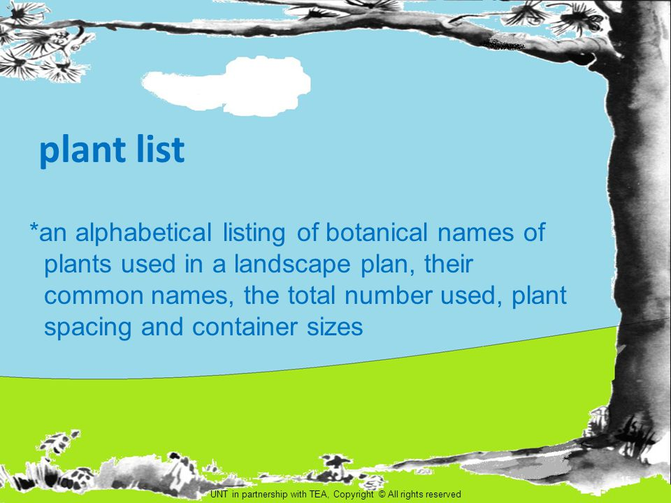 plant list *an alphabetical listing of botanical names of plants used in a landscape plan, their common names, the total number used, plant spacing an