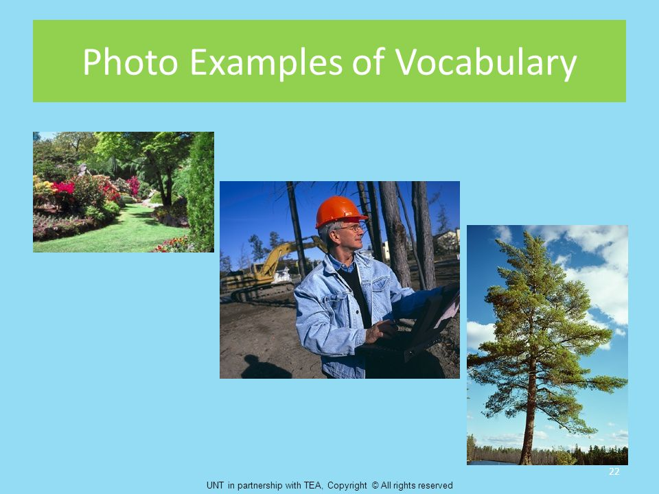 Photo Examples of Vocabulary 22 UNT in partnership with TEA, Copyright © All rights reserved