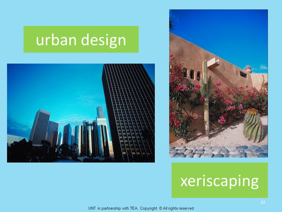 urban design xeriscaping 32 UNT in partnership with TEA, Copyright © All rights reserved