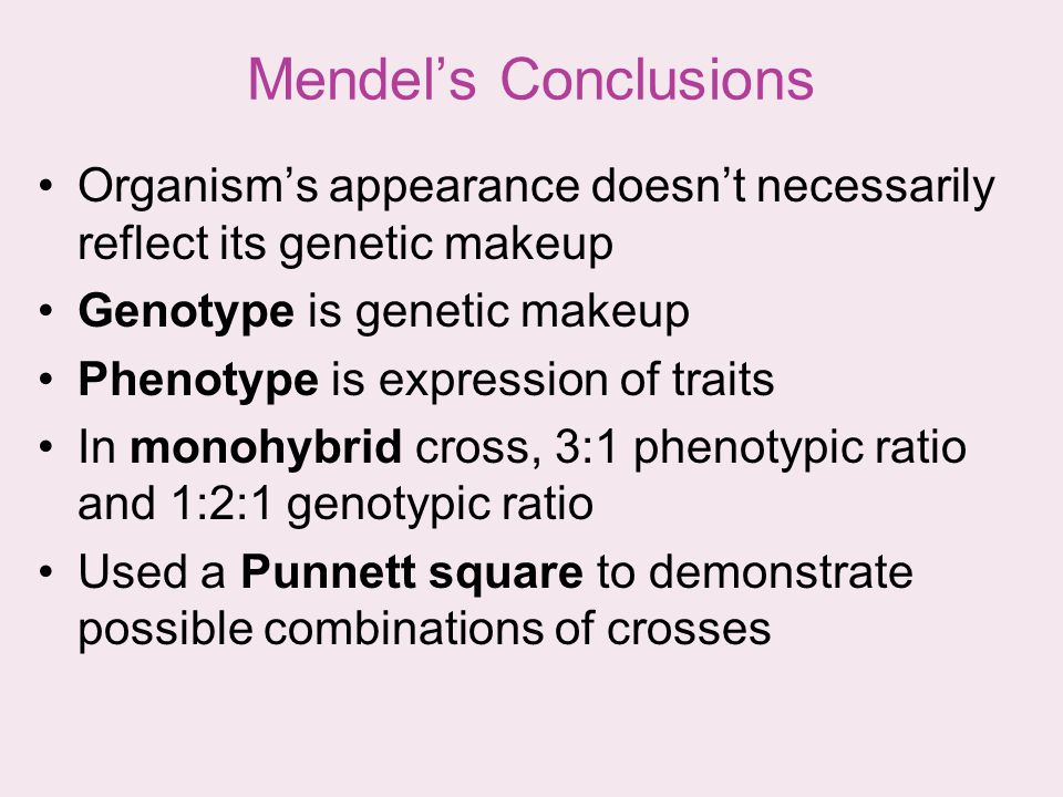 Mendels Conclusions Organisms appearance doesnt necessarily reflect its genetic makeup Genotype is genetic makeup Phenotype is expression of traits In
