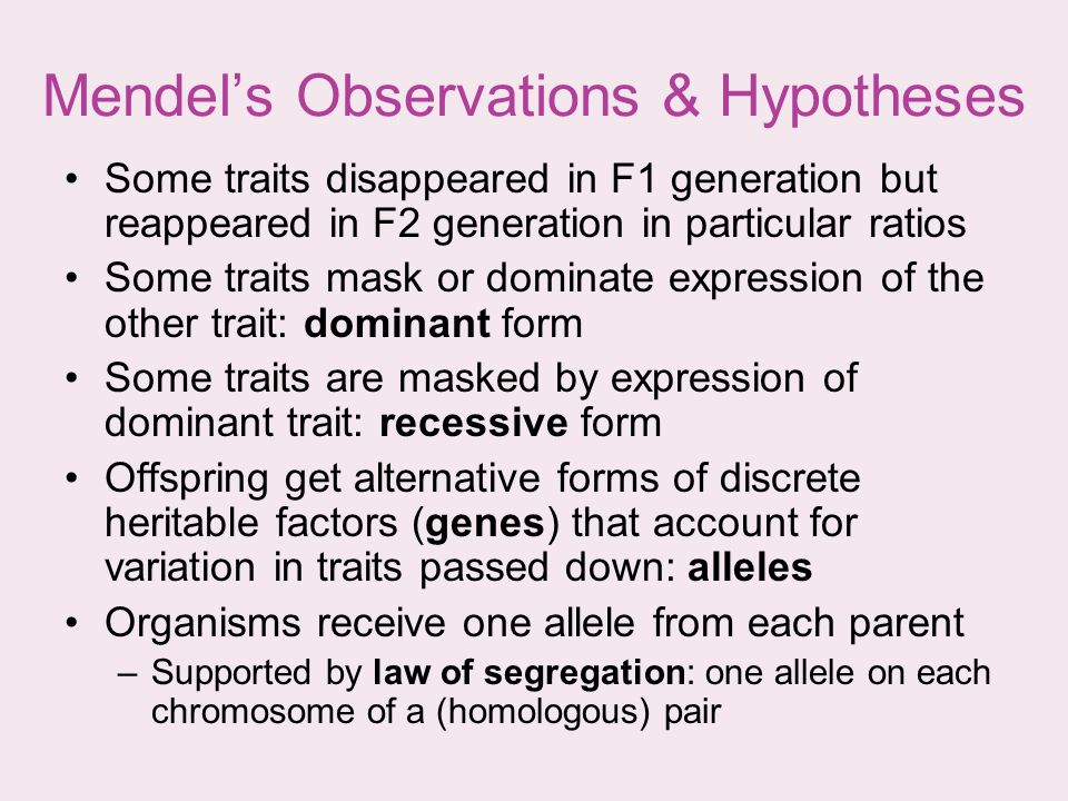 Mendels Observations & Hypotheses Some traits disappeared in F1 generation but reappeared in F2 generation in particular ratios Some traits mask or do