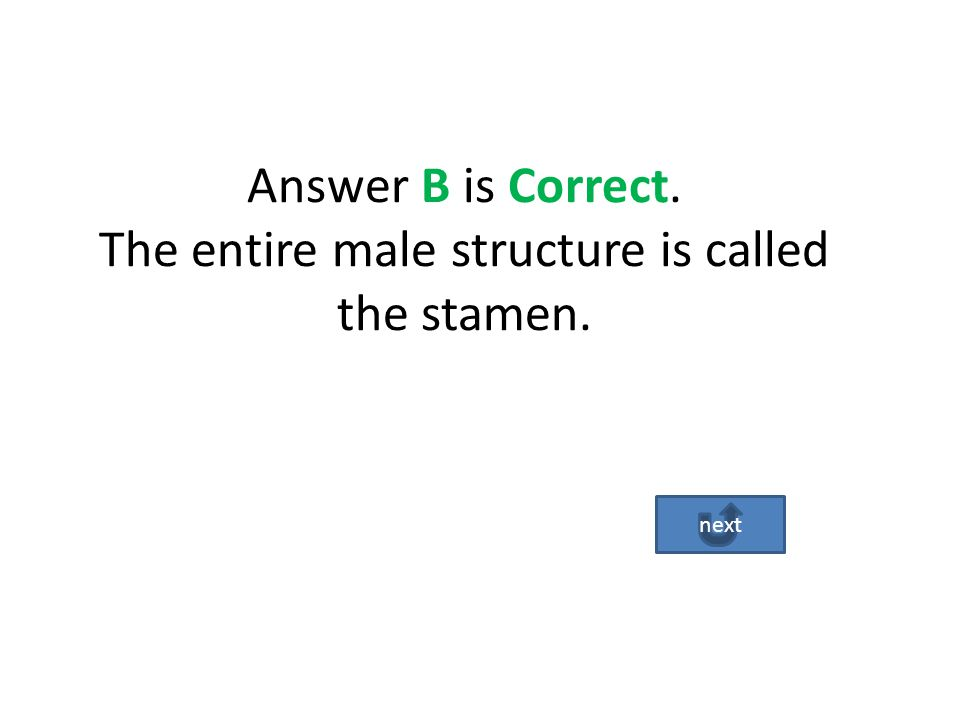 The answer A in incorrect. The Carpel is the entire female part structure. Go Back Try Again!