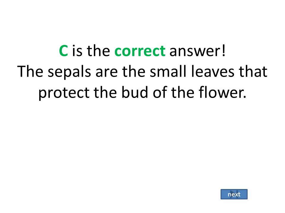 B is the incorrect answer. The carpel is the entire female structure that includes the stigma, style, and ovary. Go back Try Again!