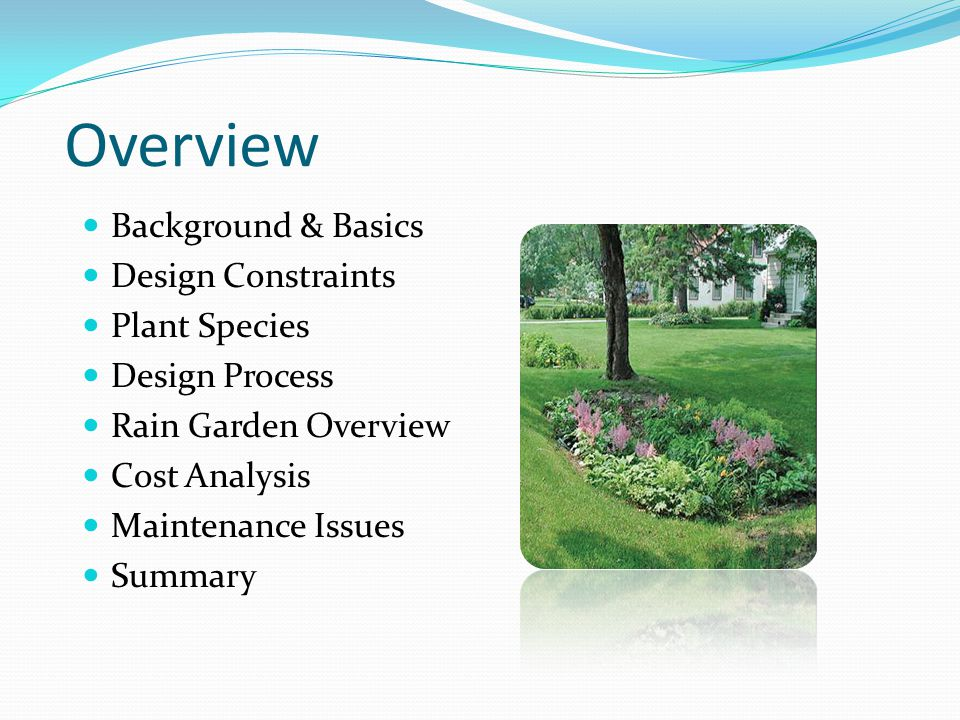 Overview Background & Basics Design Constraints Plant Species Design Process Rain Garden Overview Cost Analysis Maintenance Issues Summary