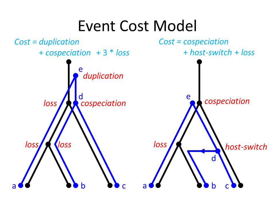 Event Cost Model abc d e cospeciation loss duplication host-switch loss cospeciation a bc d e Cost = duplication + cospeciation + 3 * loss Cost = cospeciation + host-switch + loss
