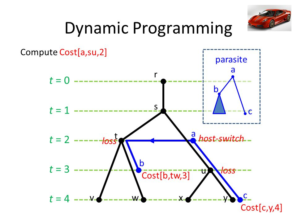 t = 0 t = 1 t = 2 t = 3 t = 4 Dynamic Programming a b c s t r u vwxy Cost[b,tw,3] loss host-switch loss Cost[c,y,4] a c b parasite Compute Cost[a,su,2