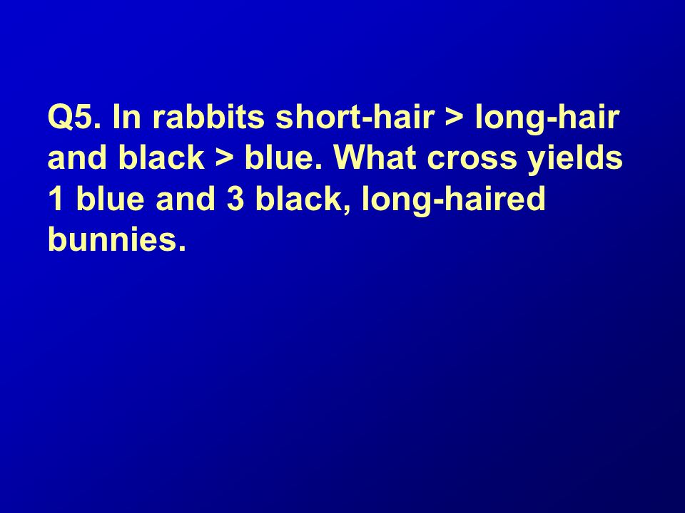 Q5. In rabbits short-hair > long-hair and black > blue. What cross yields 1 blue and 3 black, long-haired bunnies.