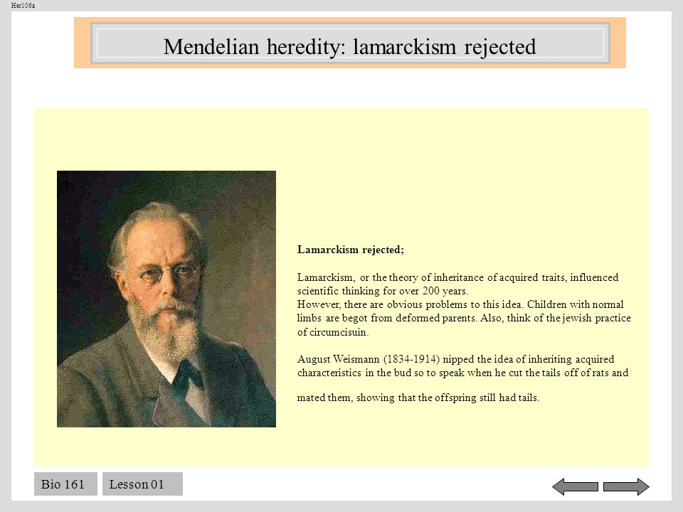 Bio 161Lesson 01 Lamarckism rejected; Lamarckism, or the theory of inheritance of acquired traits, influenced scientific thinking for over 200 years.