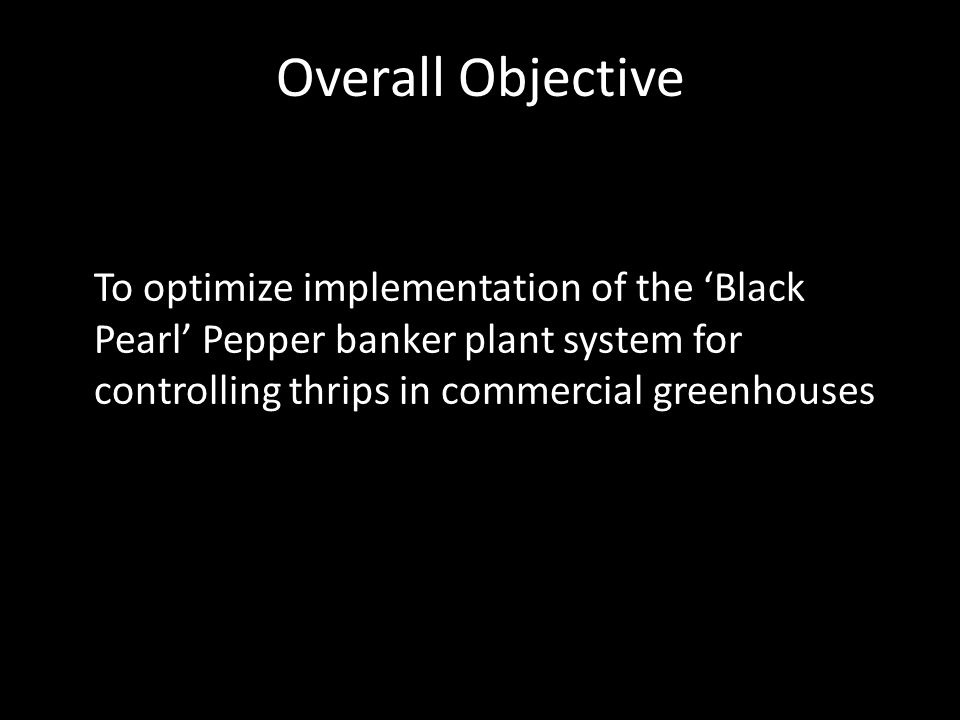 First Question How does pollen from the Black Pearl Pepper Banker Plant affect O.