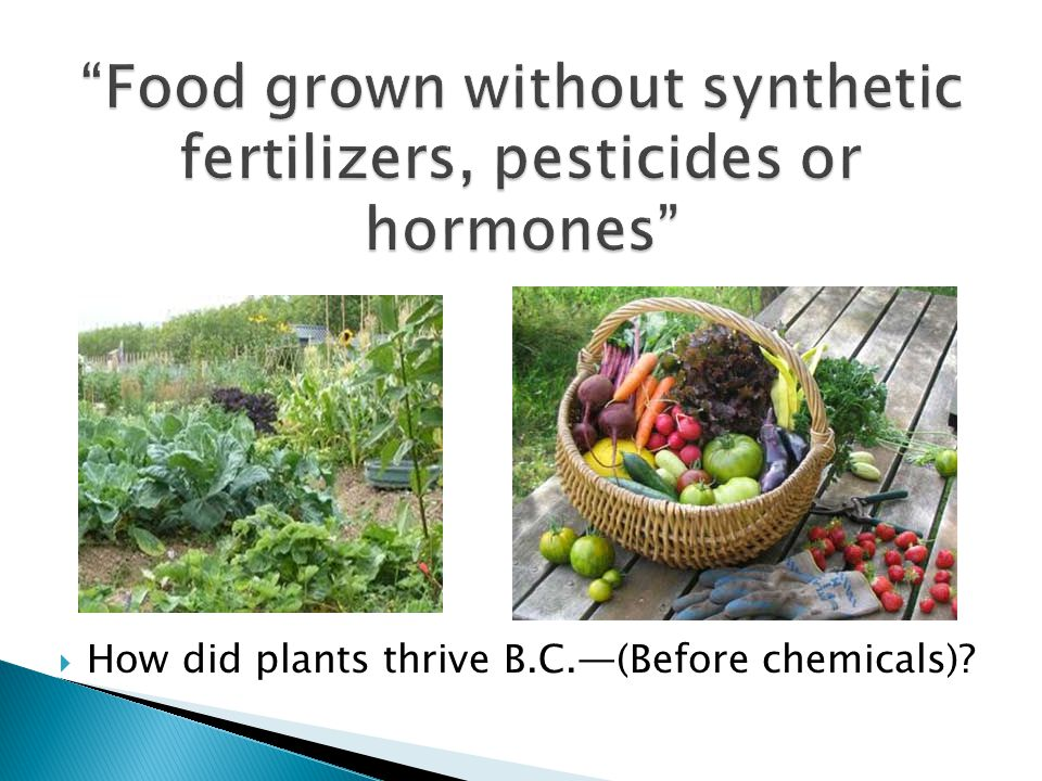 Natural fertilizers, such as composts and pasteurized manures Cover crops over the winter to add nitrogen Soil testing before gardening and every two years following Treat your worms with loving care!