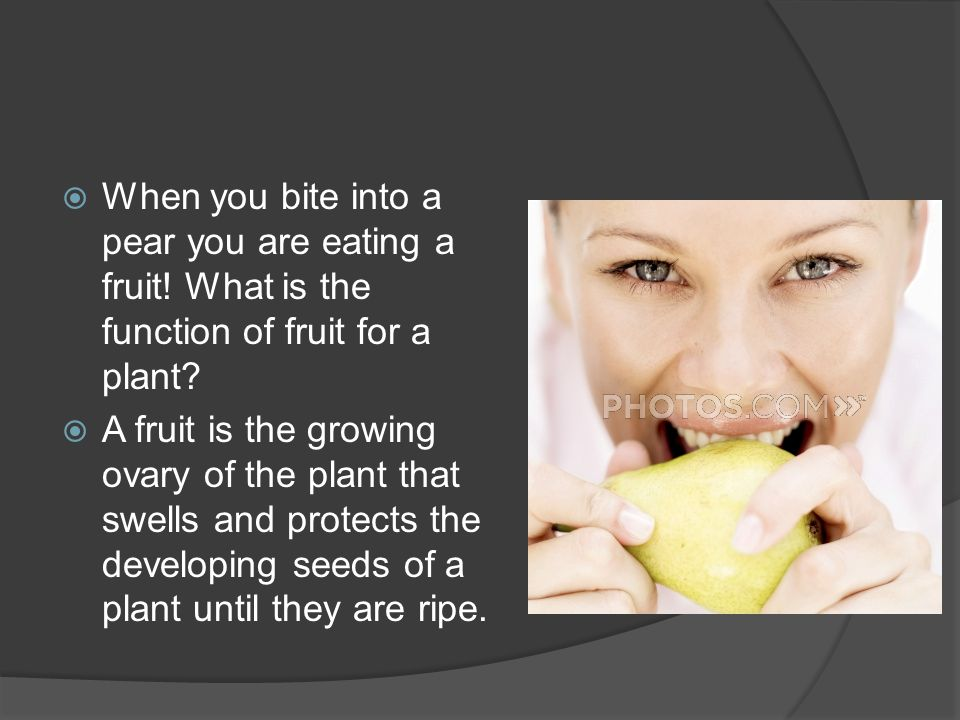 When you bite into a pear you are eating a fruit.What is the function of fruit for a plant.