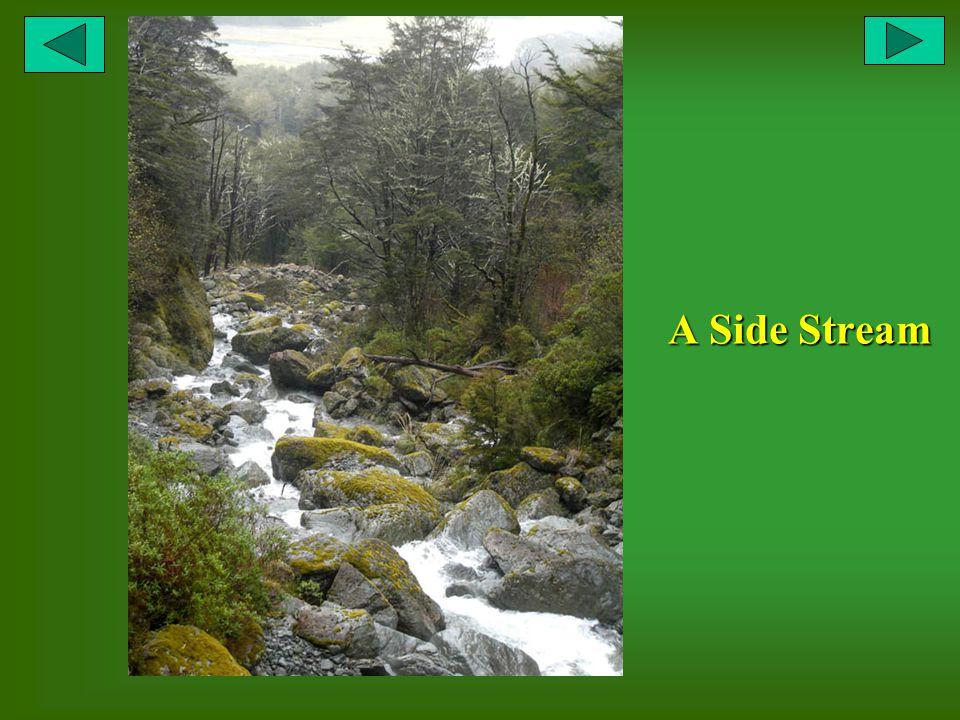 A Side Stream