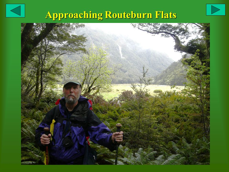 Approaching Routeburn Flats