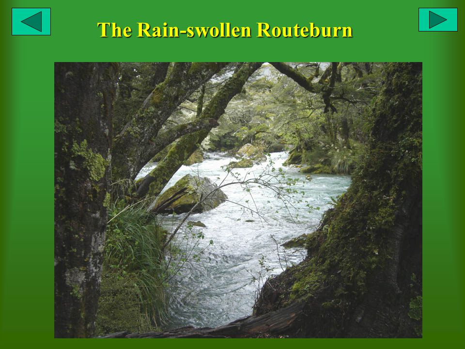 The Rain-swollen Routeburn