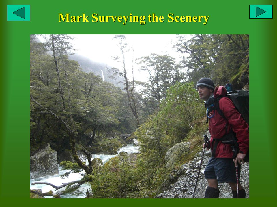 Mark Surveying the Scenery