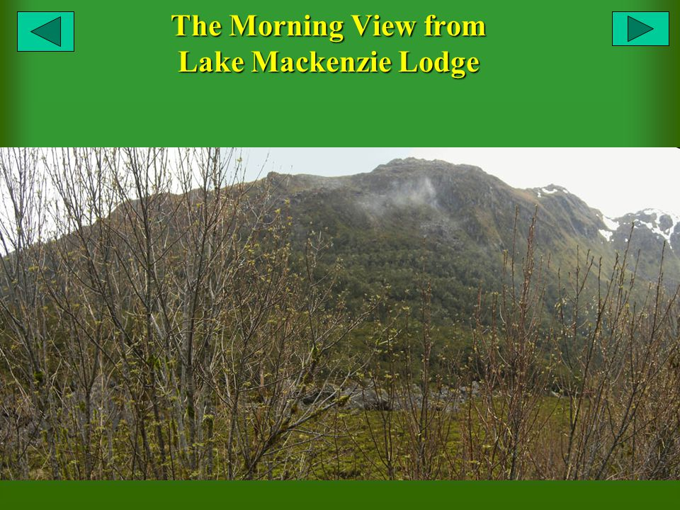 The Morning View from Lake Mackenzie Lodge