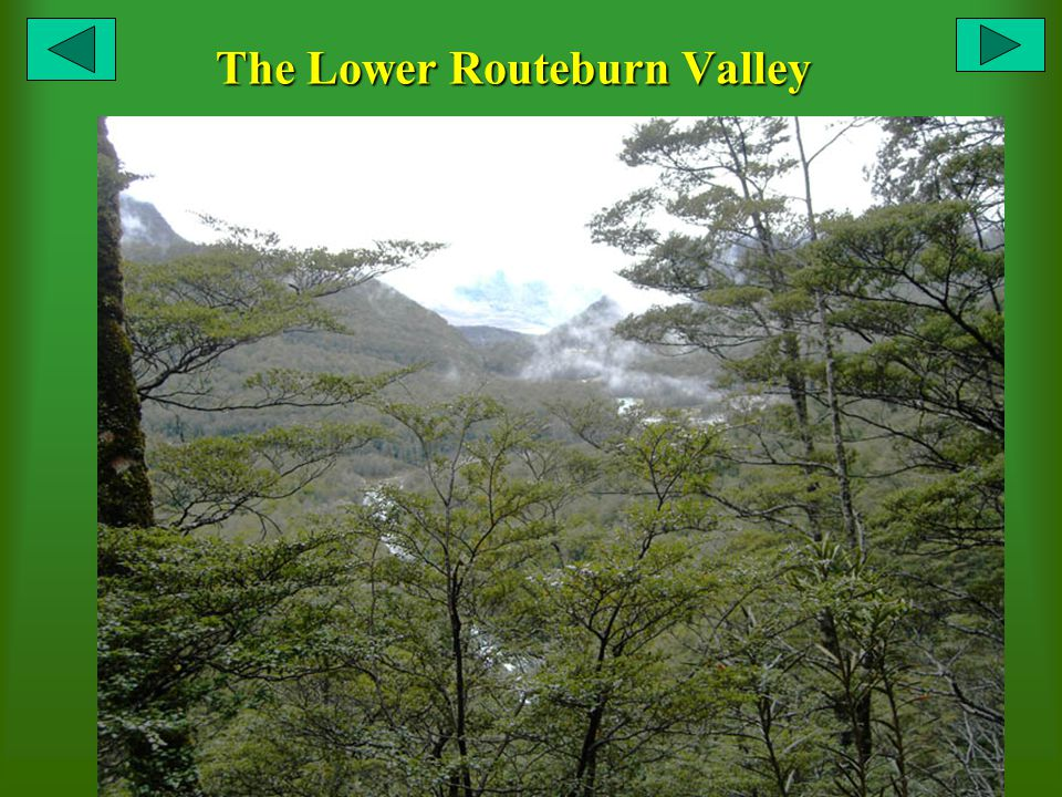 The Lower Routeburn Valley