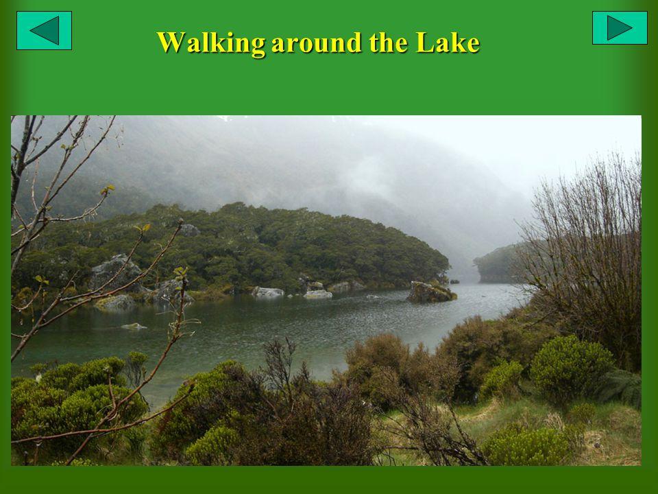 Walking around the Lake
