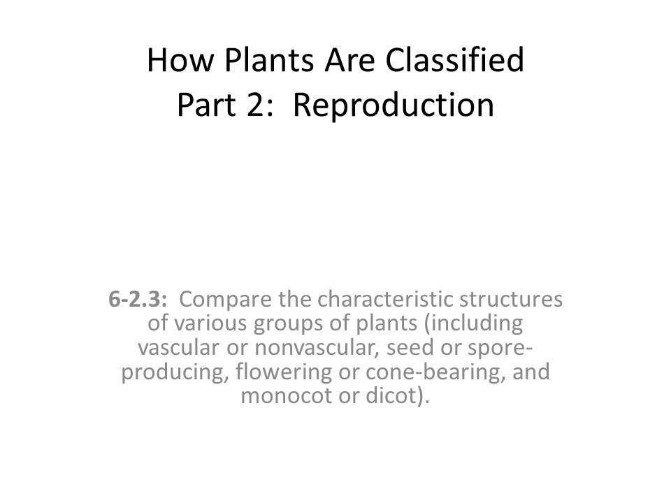 How Plants Are Classified Part 2: Reproduction 6-2.3: Compare the characteristic structures of various groups of plants (including vascular or nonvasc