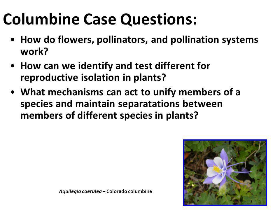 Columbine Case Questions: How do flowers, pollinators, and pollination systems work? How can we identify and test different for reproductive isolation