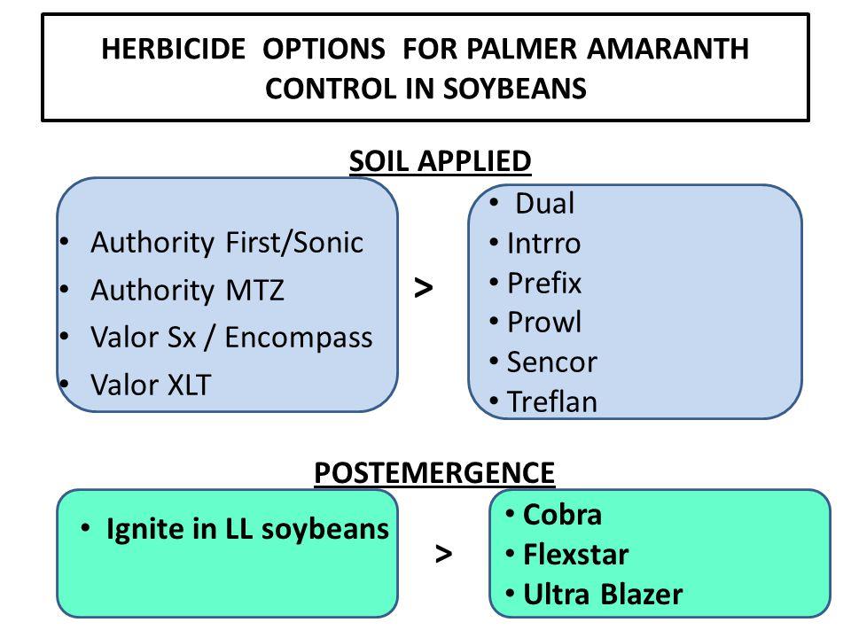 HERBICIDE OPTIONS FOR PALMER AMARANTH CONTROL IN SOYBEANS Authority First/Sonic Authority MTZ Valor Sx / Encompass Valor XLT SOIL APPLIED POSTEMERGENCE Dual Intrro Prefix Prowl Sencor Treflan > Ignite in LL soybeans > Cobra Flexstar Ultra Blazer