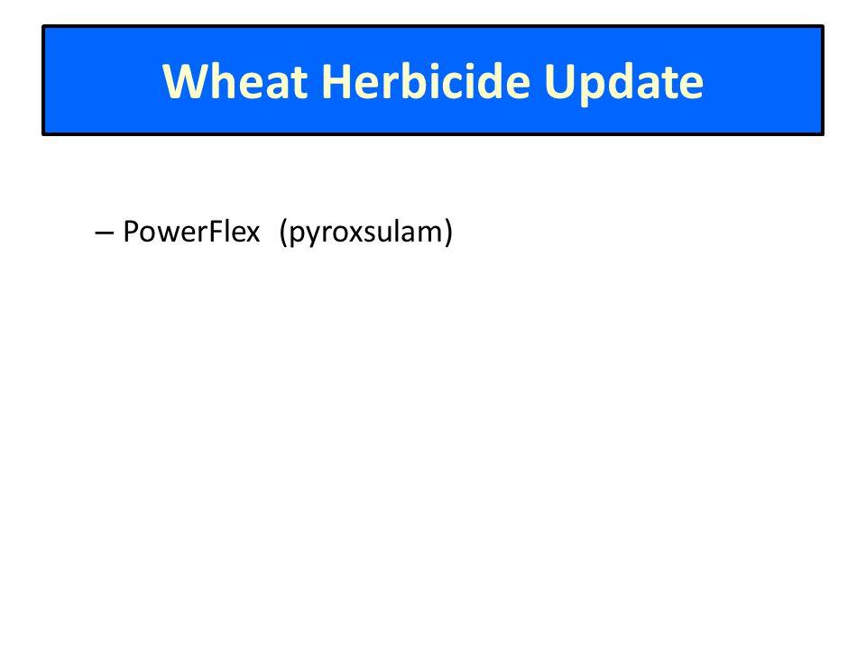 Wheat Herbicide Update – PowerFlex (pyroxsulam)