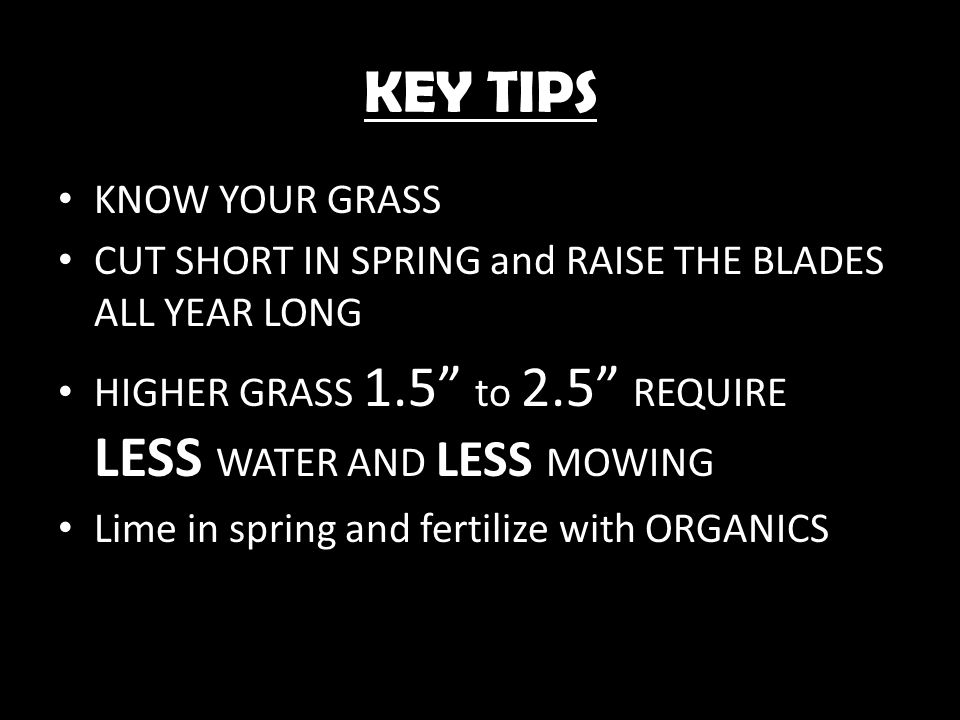 KEY TIPS KNOW YOUR GRASS CUT SHORT IN SPRING and RAISE THE BLADES ALL YEAR LONG HIGHER GRASS 1.5 to 2.5 REQUIRE LESS WATER AND LESS MOWING Lime in spr