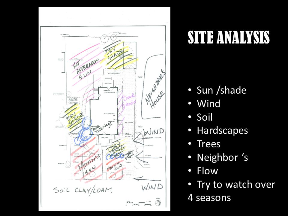 SITE ANALYSIS Sun /shade Wind Soil Hardscapes Trees Neighbor s Flow Try to watch over 4 seasons
