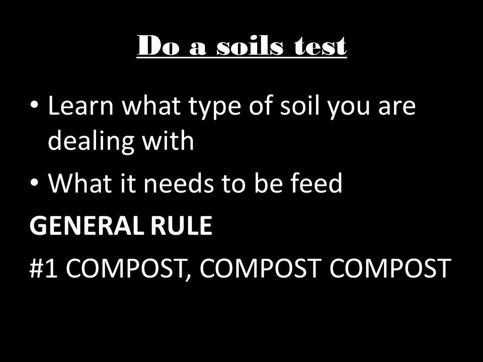Do a soils test Learn what type of soil you are dealing with What it needs to be feed GENERAL RULE #1 COMPOST, COMPOST COMPOST