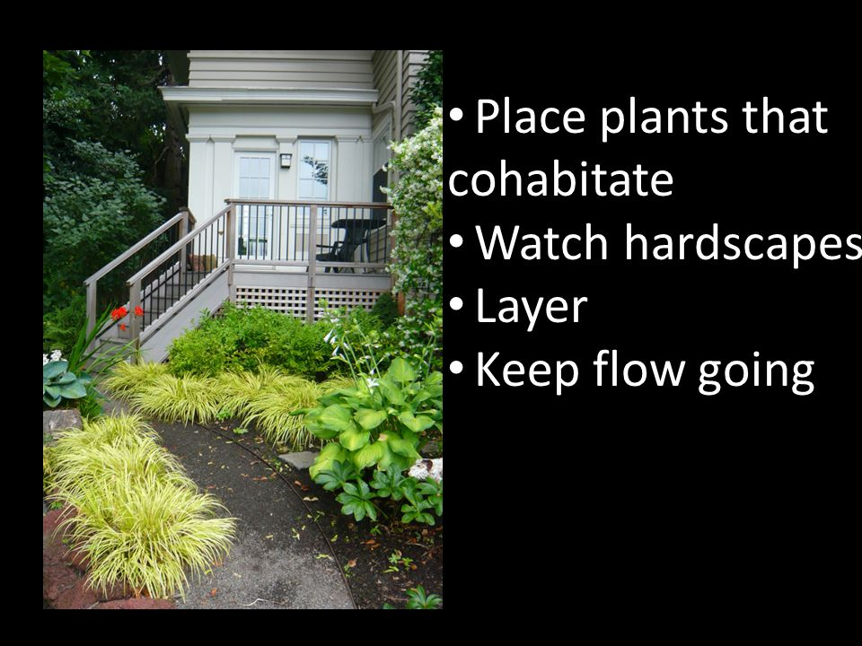 RIGHT PLANT RIGHT PLACE Place plants that cohabitate Watch hardscapes Layer Keep flow going