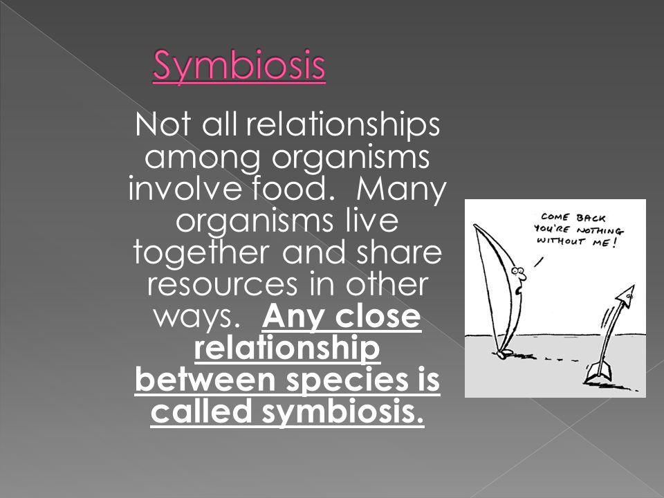 Mutualism Commensalism Parasitism