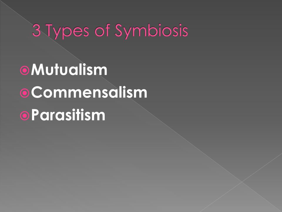 Mutualism – A symbiotic relationship in which both species benefit.