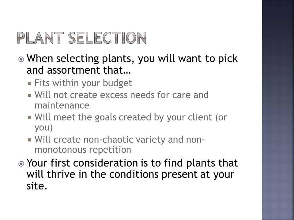 When selecting plants, you will want to pick and assortment that… Fits within your budget Will not create excess needs for care and maintenance Will meet the goals created by your client (or you) Will create non-chaotic variety and non- monotonous repetition Your first consideration is to find plants that will thrive in the conditions present at your site.