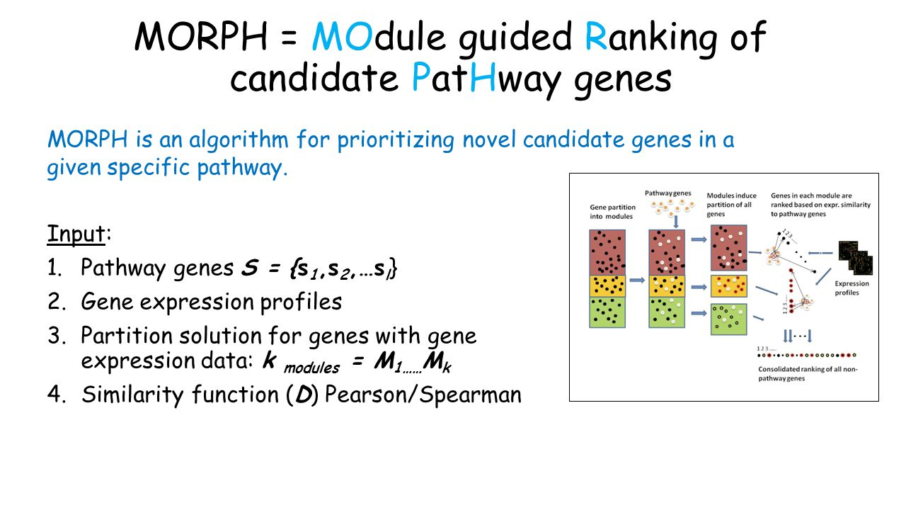MORPH = MOdule guided Ranking of candidate PatHway genes Input: 1.Pathway genes S = {s 1,s 2,…s l } 2.Gene expression profiles 3.Partition solution for genes with gene expression data: k modules = M 1…… M k 4.Similarity function (D) Pearson/Spearman MORPH is an algorithm for prioritizing novel candidate genes in a given specific pathway.