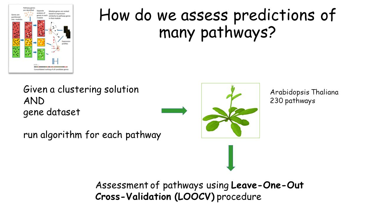 How do we assess predictions of many pathways.