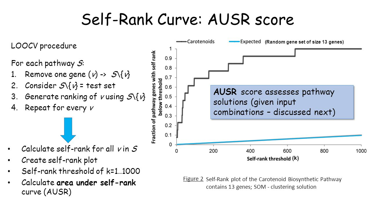 Self-Rank Curve: AUSR score LOOCV procedure For each pathway S: 1.Remove one gene (v) -> S\{v} 2.Consider S\{v} = test set 3.Generate ranking of v using S\{v} 4.Repeat for every v Calculate self-rank for all v in S Create self-rank plot Self-rank threshold of k=1..1000 Calculate area under self-rank curve (AUSR) Self-Rank plot of the Carotenoid Biosynthetic Pathway contains 13 genes; SOM - clustering solution Figure 2 (Random gene set of size 13 genes) (k) AUSR score assesses pathway solutions (given input combinations – discussed next)