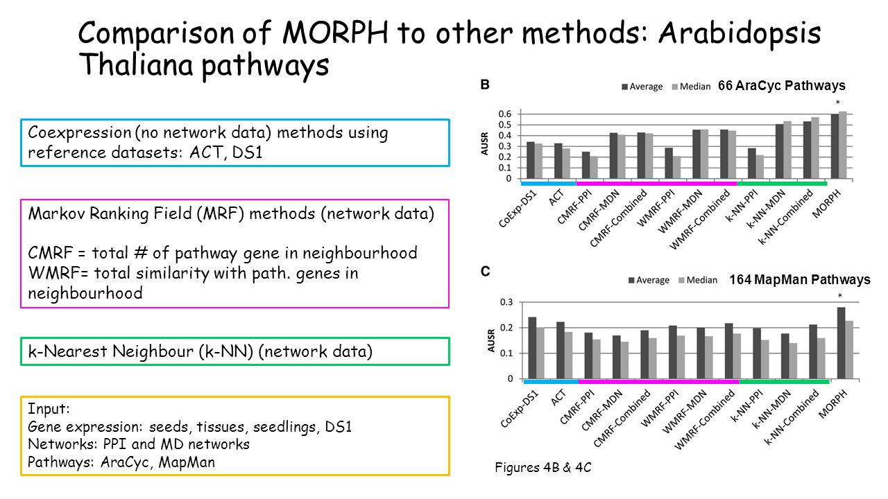 Comparison of MORPH to other methods: Arabidopsis Thaliana pathways 66 AraCyc Pathways Input: Gene expression: seeds, tissues, seedlings, DS1 Networks: PPI and MD networks Pathways: AraCyc, MapMan Coexpression (no network data) methods using reference datasets: ACT, DS1 Markov Ranking Field (MRF) methods (network data) CMRF = total # of pathway gene in neighbourhood WMRF= total similarity with path.
