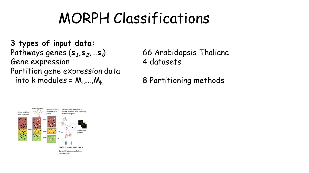 MORPH Classifications 3 types of input data: Pathways genes (s 1,s 2,…s l ) Gene expression Partition gene expression data into k modules = M 1,…,M k 66 Arabidopsis Thaliana 4 datasets 8 Partitioning methods