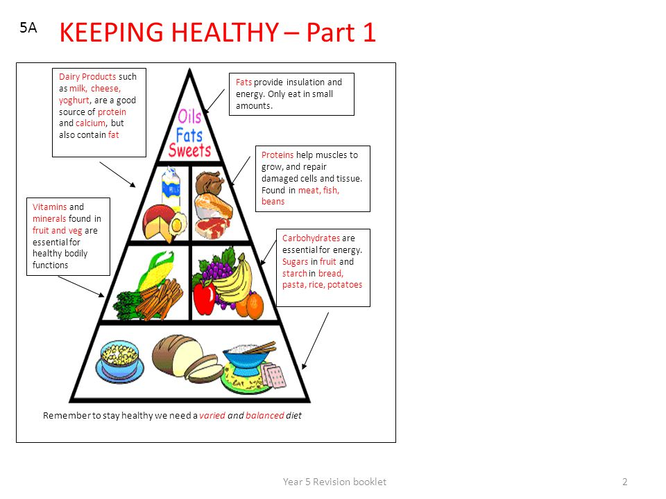 Year 5 Revision booklet2 5A KEEPING HEALTHY – Part 1 Remember to stay healthy we need a varied and balanced diet Fats provide insulation and energy. O
