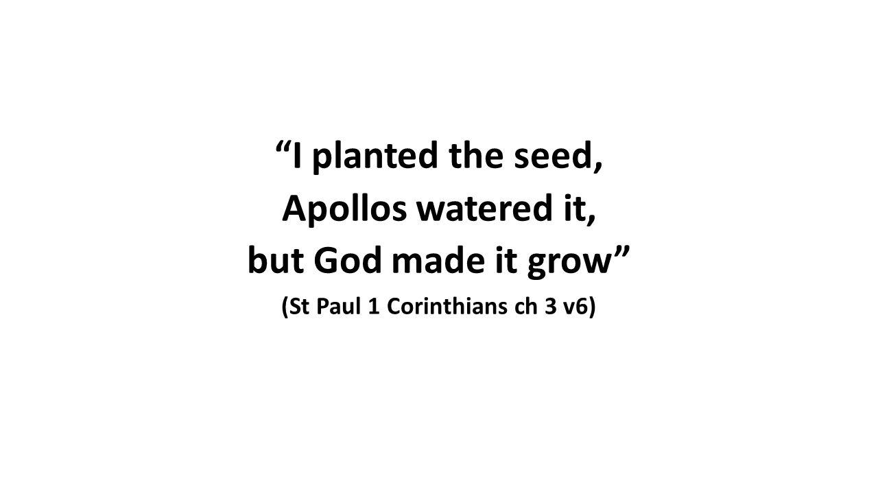 I planted the seed, Apollos watered it, but God made it grow (St Paul 1 Corinthians ch 3 v6)