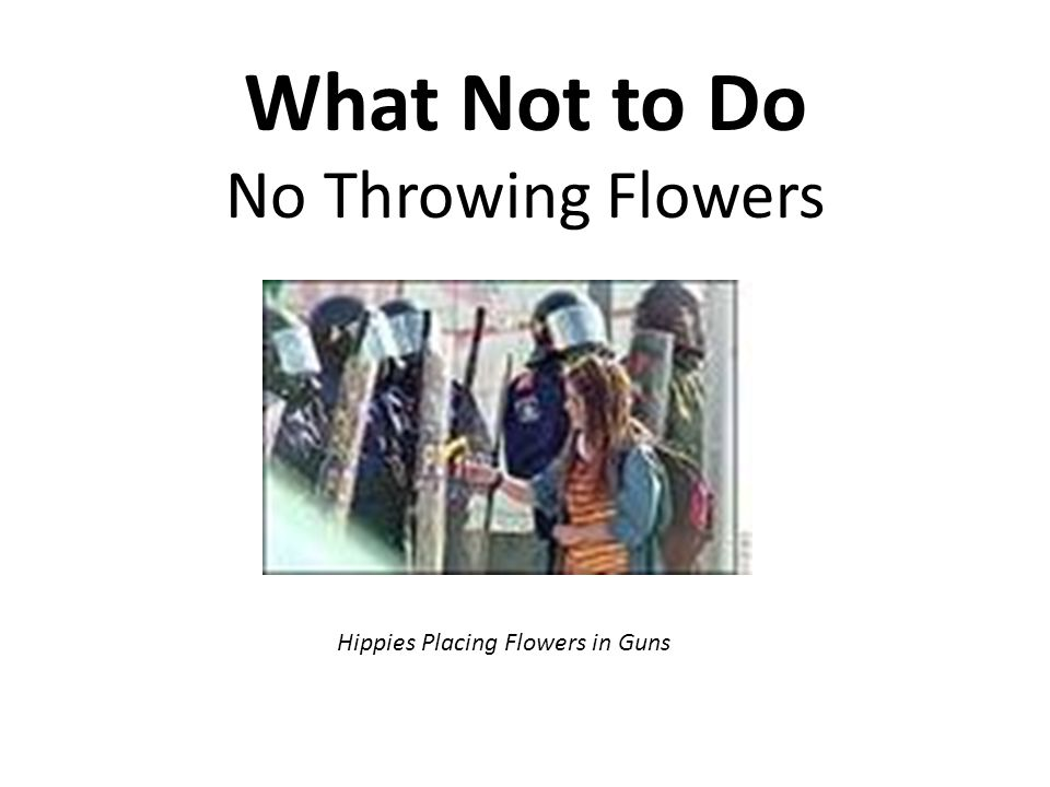 What Not to Do No Throwing Flowers Hippies Placing Flowers in Guns