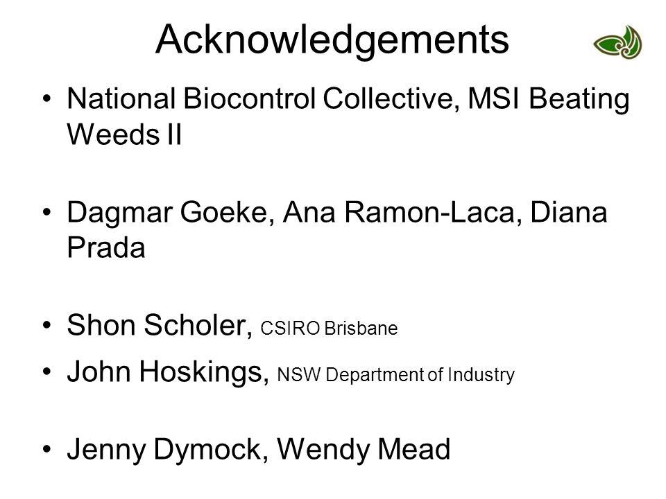 Acknowledgements National Biocontrol Collective, MSI Beating Weeds II Dagmar Goeke, Ana Ramon-Laca, Diana Prada Shon Scholer, CSIRO Brisbane John Hosk