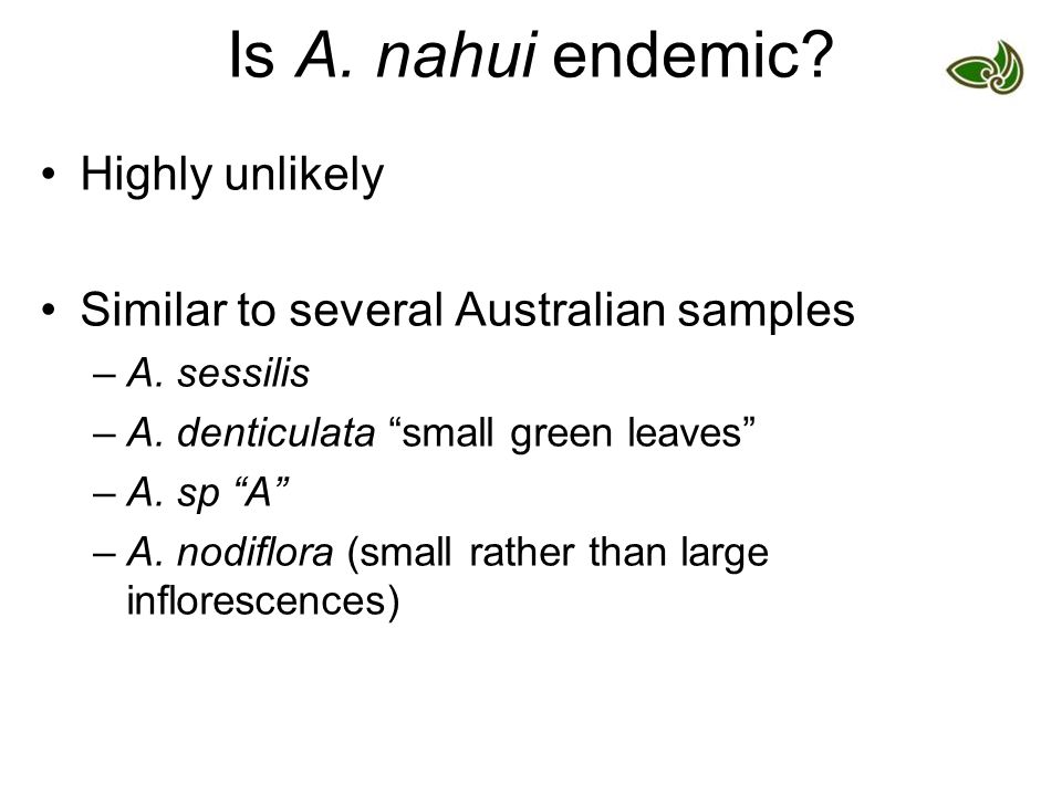 Is A. nahui endemic. Highly unlikely Similar to several Australian samples –A.