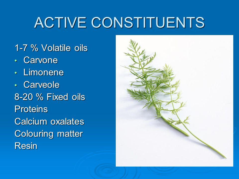 ACTIVE CONSTITUENTS 1-7 % Volatile oils Carvone Carvone Limonene Limonene Carveole Carveole 8-20 % Fixed oils Proteins Calcium oxalates Colouring matt