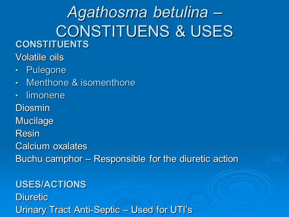 Agathosma betulina – CONSTITUENS & USES CONSTITUENTS Volatile oils Pulegone Pulegone Menthone & isomenthone Menthone & isomenthone limonene limoneneDi